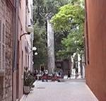 Colonna Romana, Trg Petra Zoranica, Zara (Zadar), Croazia. Autore e Copyright: Marco Ramerini