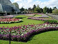 Kew Garden, Londra, Regno Unito. Autore e Copyright: Marco Ramerini